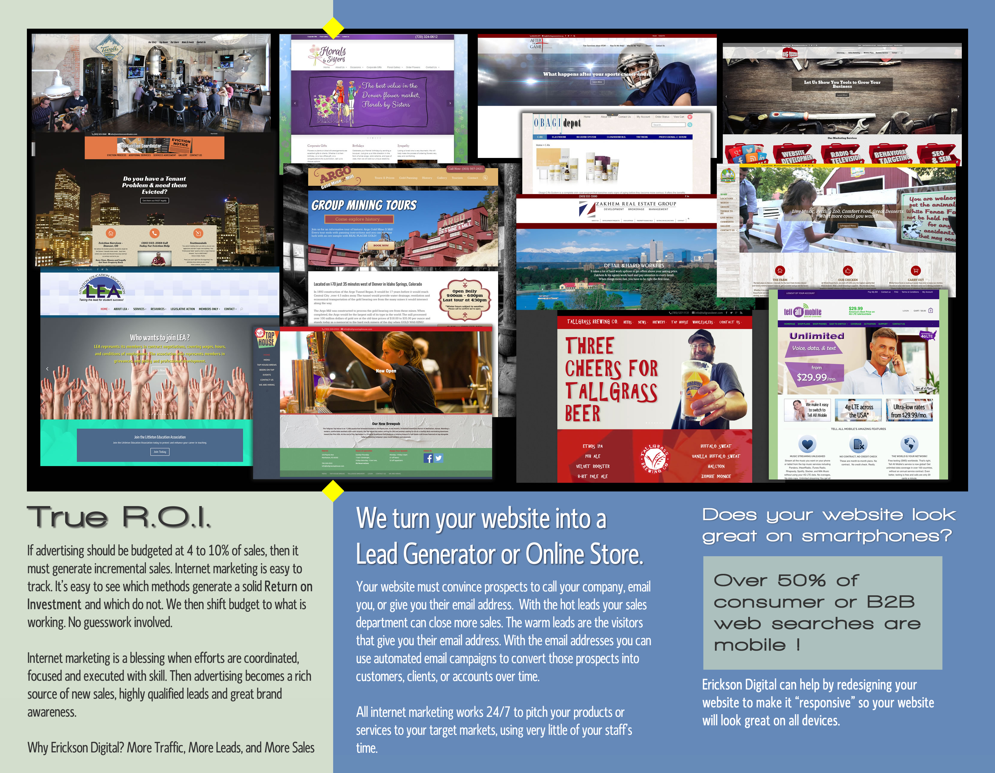 erickson digital web design brochure --inside