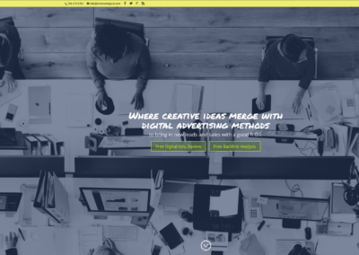 Erickson Digital advertising website