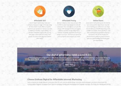 ERiCKSON DiGiTAL affordable web design & advertising I Denver